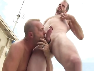 blowjob Estimated Transaction Hardcore Dealings Orgy bareback