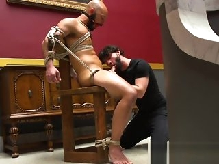 blowjob bdsm